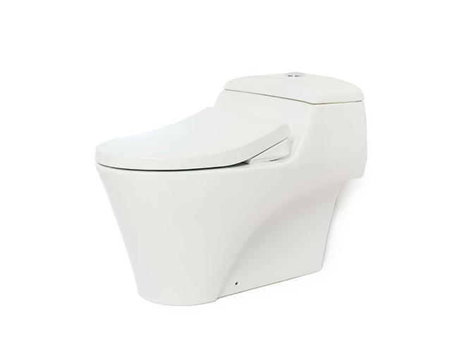 Bồn cầu toto Eco washer CW823W/FE4