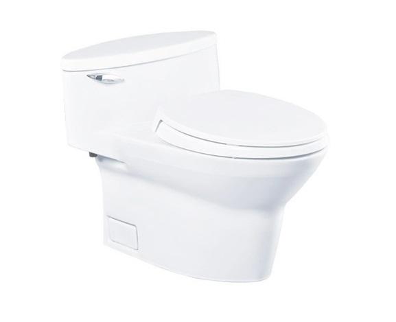 Bồn cầu toto Washlet CW904W/FW4